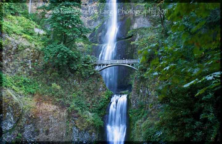 Multonomah Falls Wallpaper Waterfalls In The Columbia River Gorge