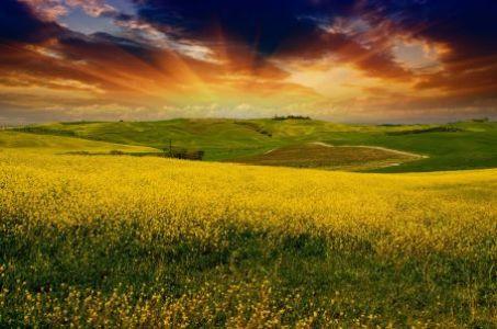 tuscany 5