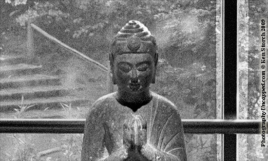 Don't Shoot the Buddha - Buddha Photograph explained
