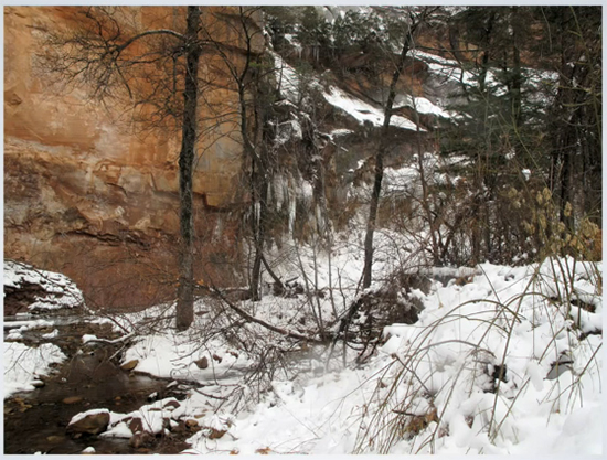 """Still Photograph - from the video """"Snow"""" by Cindy Millikin"""