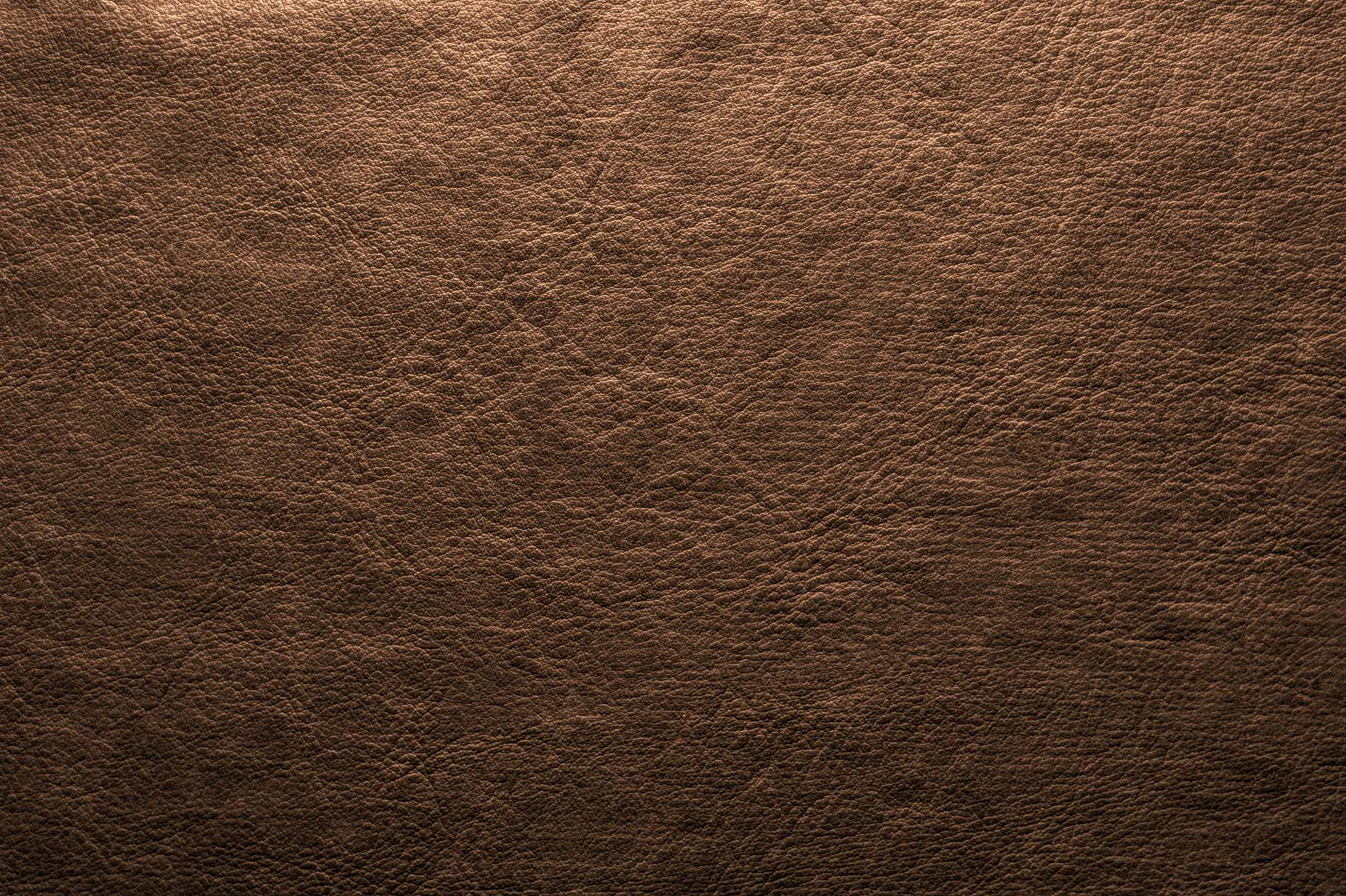 Free Green Cow Stock Photo Images Of Home Design Biogas Diagram Image 36146824 Abstract Dark Brown Leather Background