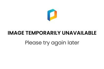 NLD/Amsterdam/20141221- Premiere Minoes, Tooske Ragas met partner Bastiaan Ragas en dochters Leentje, Feline, Catoo (Anneke Janssen/foto: Anneke Janssen)