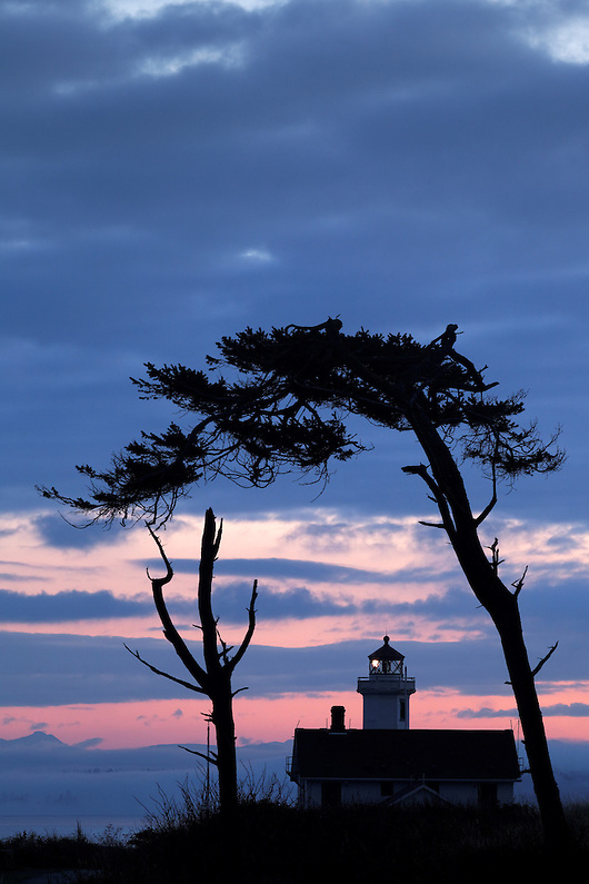Point Wilson Lighthouse framed by trees, Fort Worden State Park, Port Townsend, Washington