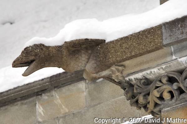 Gargoyles Outside Nidaros Cathedral in Trondheim, Norway. Image taken with a Nikon D2xs and 80-400 mm VR lens (ISO 400, 300 mm, f/5.6, 1/80 sec) (David J Mathre)