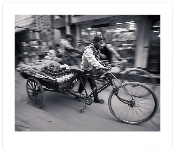 Bicycle Rickshaw, Chandni Chowk, Old Delhi, India (Ian Mylam/© Ian Mylam (www.ianmylam.com))