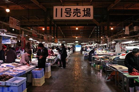 Shiogama Fish Market, Sendai, Tohoku, Japan