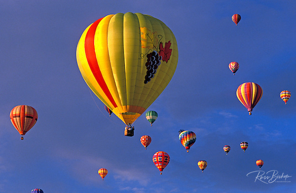 Hot air balloons rising in dawn light at the International Balloon Fiesta, Albuquerque, New Mexico (Russ Bishop/Russ Bishop Photography)