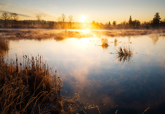 Sun rises over tidal wetland, Spencer Island, Snohomish Country Parks & Recreation, Everett, Washington (Brad Mitchell Photography)