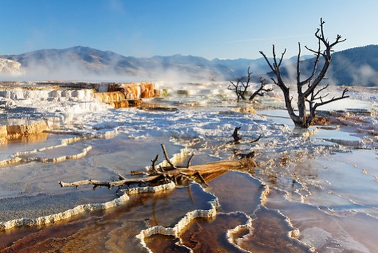 Travertine terraces at Mammoth Hot Springs, Yellowstone National Park, Wyoming