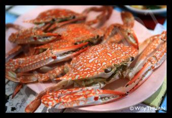 thai-blue-crab