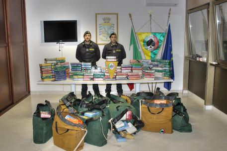 Porto di Gioia Tauro, Sequestrati 540 chili di cocaina purissima