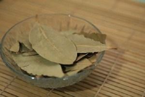 alloro-foglie-730x430