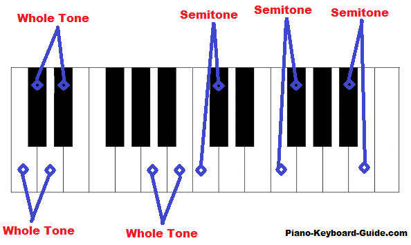 Whole Tones And Semitones Whole Steps And Half Steps In