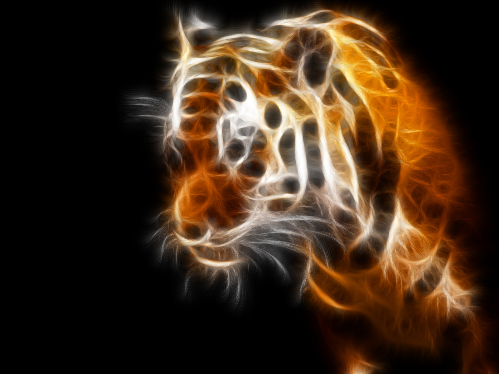 Hd 3d Neon Wallpapers Neon Tiger Hd Images And Pictures Picamon