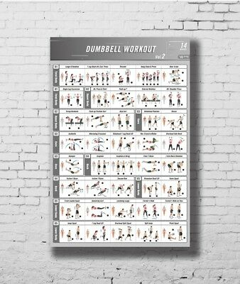DUMBBELL EXERCISE  Fitness Poster Laminated Gym Planner for a