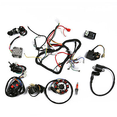 250cc Wiring Harness - Wiring Diagram