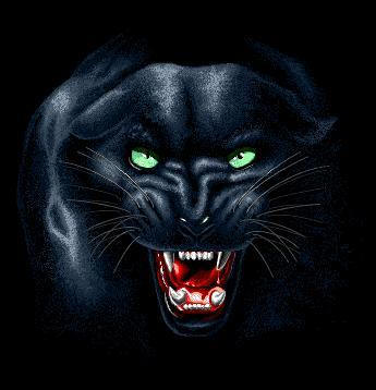 Famous Anime Wallpaper Panther Graphic Animated Gif Graphics Panther 594787