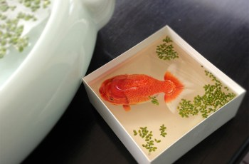 Three Dimensional Animals Painted in Layers of Resin by Keng Lye 1