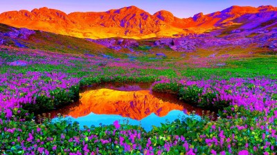 HD 1080p Nature Wallpapers Free Download