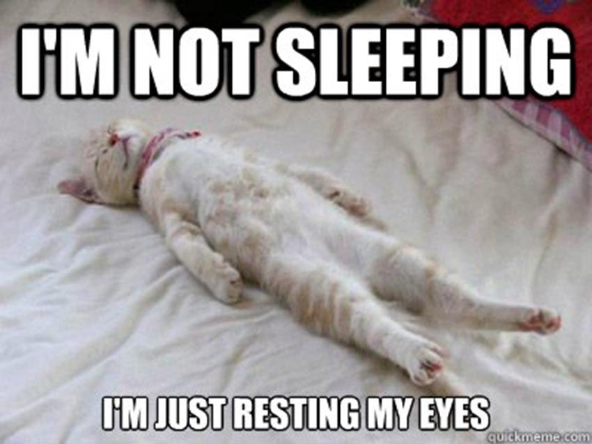 Dirty Harry Quotes Wallpaper Im Not Sleeping Im Just Resting My Eyes Sleeping Meme