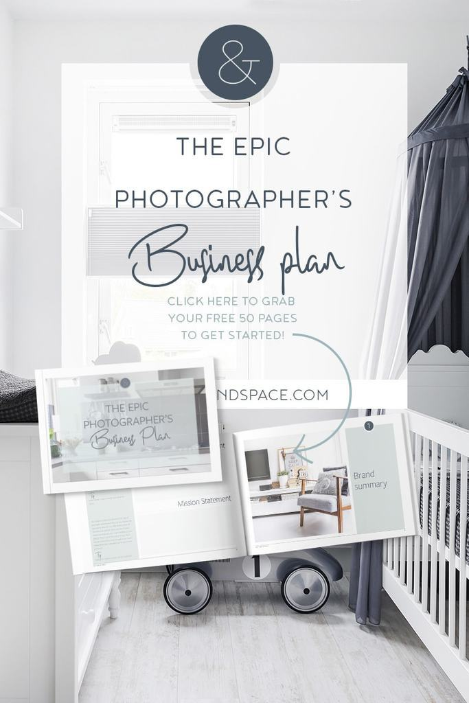 The Epic Photographers Business Plan Picture  Space