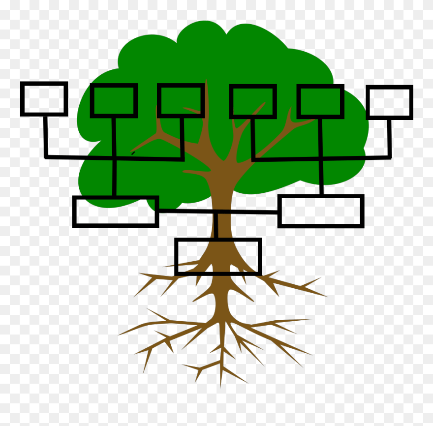 Free Family Tree Clipart Image - Tree Clip Art - Png Download (#335