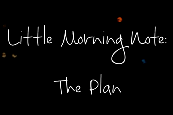 www.pinkcaboodle.com The Plan