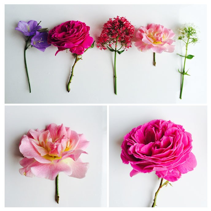 Pippa_Jameson_How_to_make_small_flower_arrangememts