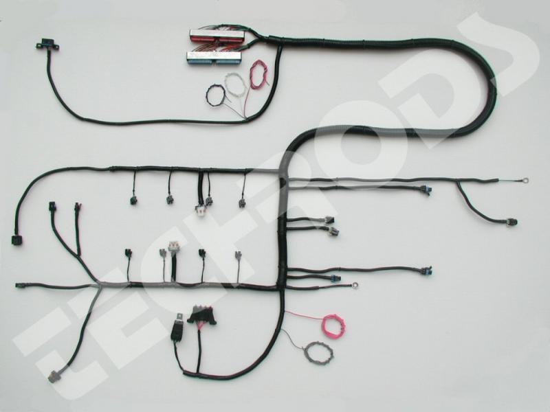 5 3 Vortec Wiring Harness Diagram Data Schema Exprh14tqebnmediationszwerkcamde: Engine Wiring Harness On 4 6 Standalone Ford At Gmaili.net