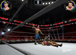 Authentic_WWE_Action_1