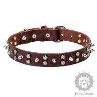 Designer Dog Collar Studded with Stars & Spikes - 40.30