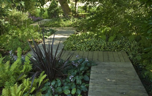 boardwalk path through garden