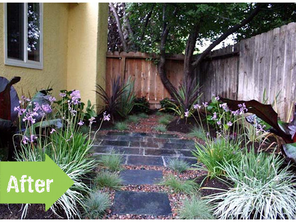 Linda's zen garden before and after via www.pithandvigor.com