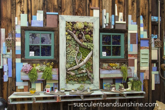 succulent cafe photographed by Cassidy Tuttle at succulents and sunshine via www.pithandvigor.com