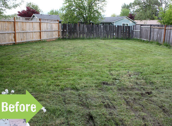 backyard, fence, new, makeover, transformation, before and after