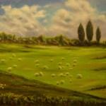 59 - prato con pecore 60 x 80