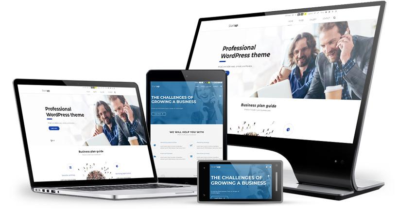 Business WordPress Theme WCAG  ADA compliance - PixelEmu