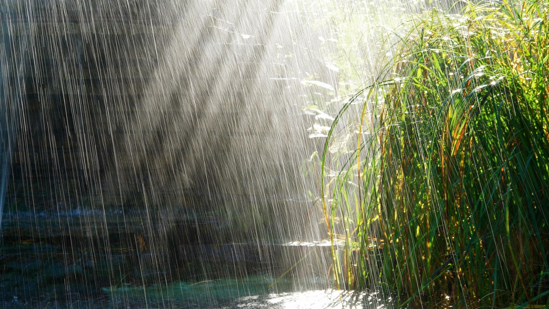 Rainy Season Wallpapers With Quotes Hd Rain Backgrounds Pixelstalk Net