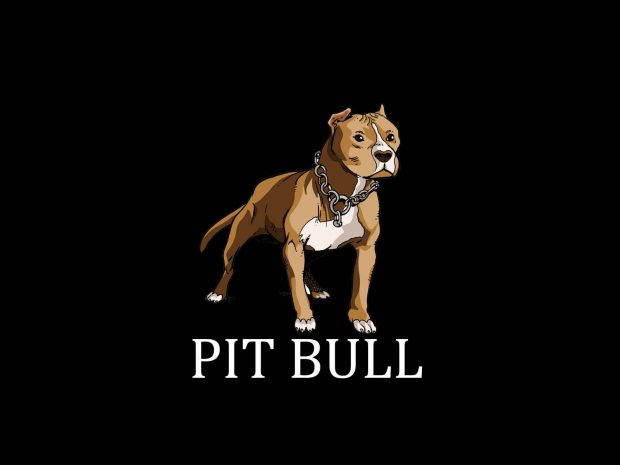 Pitbull Wallpapers 3d Free Pitbull Wallpapers Download Pixelstalk Net