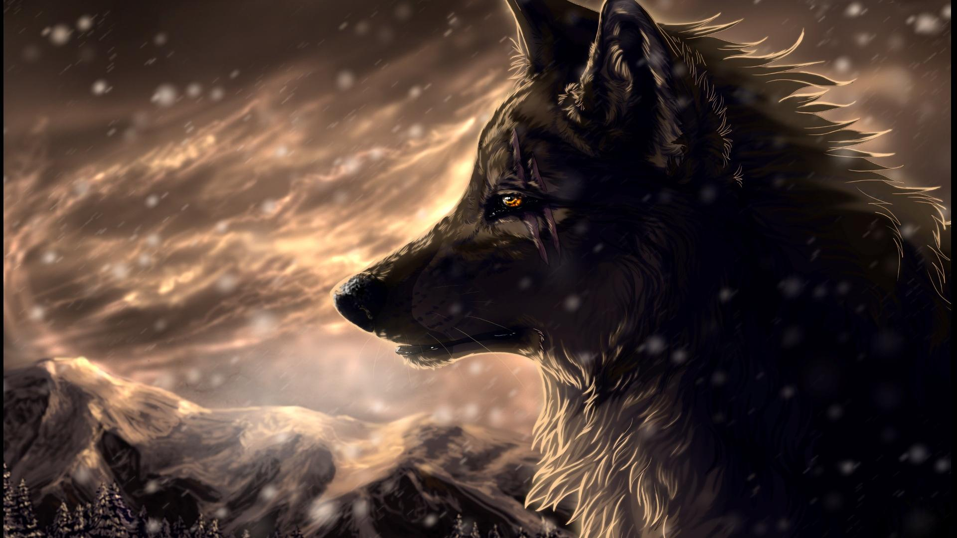 Wolf Wallpapers Free Download Pixelstalknet