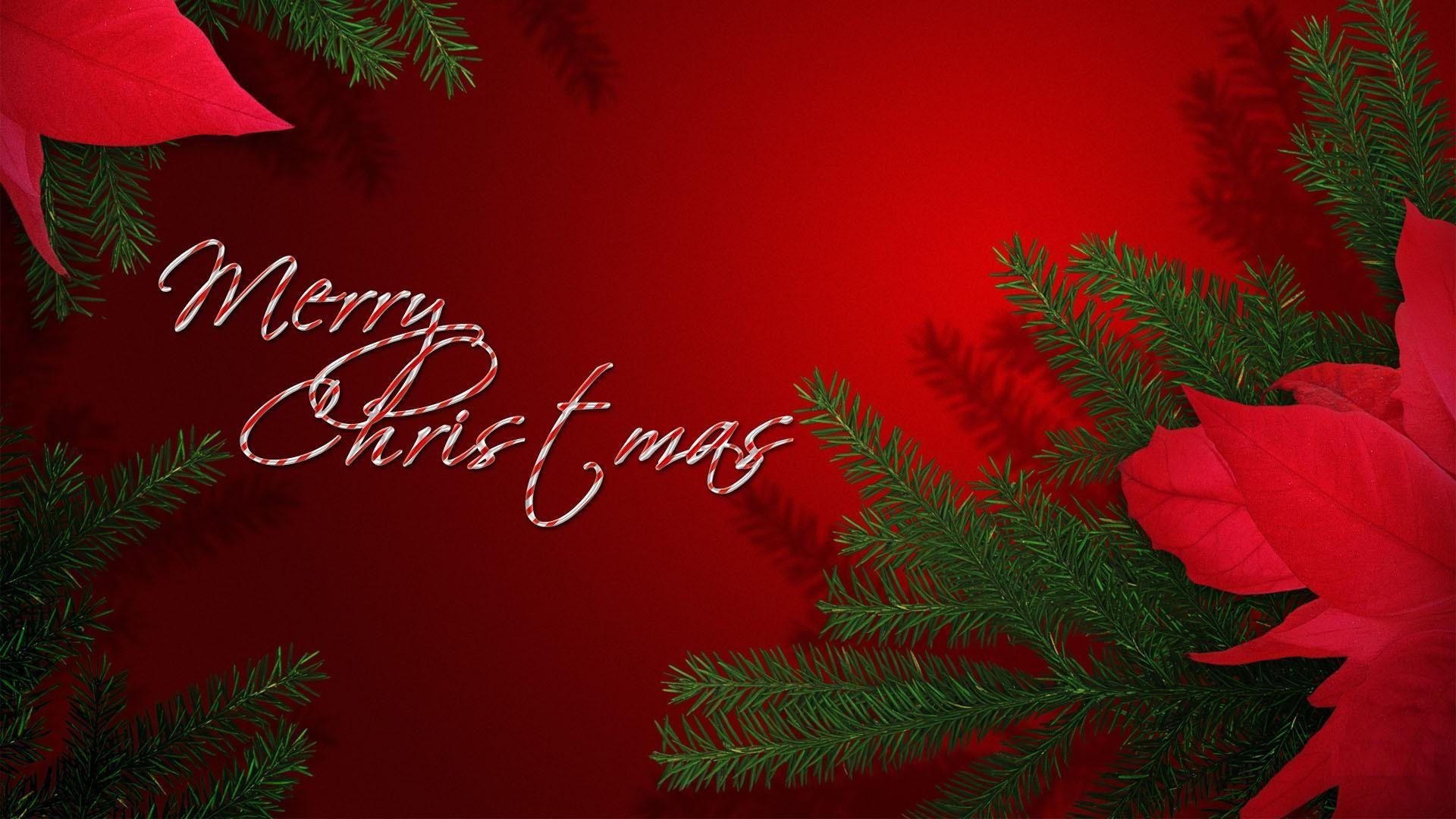 3d Xmas Tree Live Wallpaper Christmas Wallpaper For Desktop Pixelstalk Net