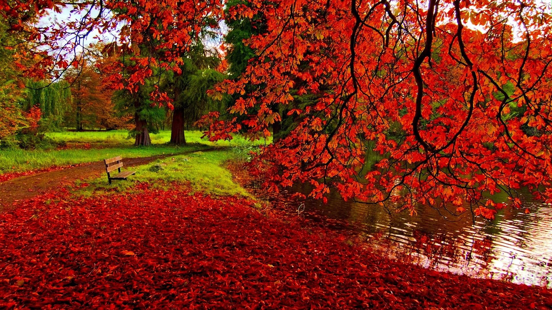 Fall Halloween Computer Wallpaper Fall Desktop Wallpapers Hd Pixelstalk Net