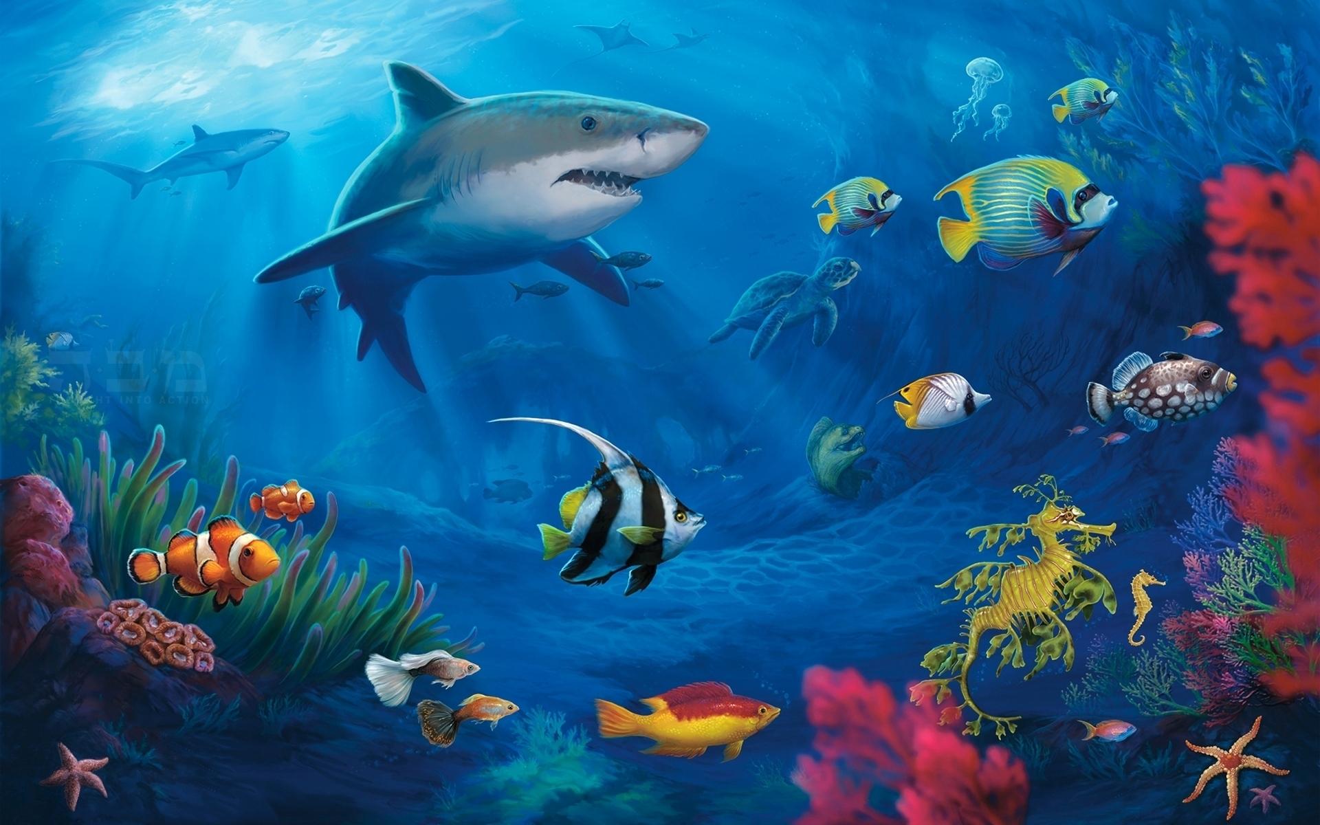 Titanic Ship 3d Wallpaper Free Download Underwater Wallpapers Hd Pixelstalk Net