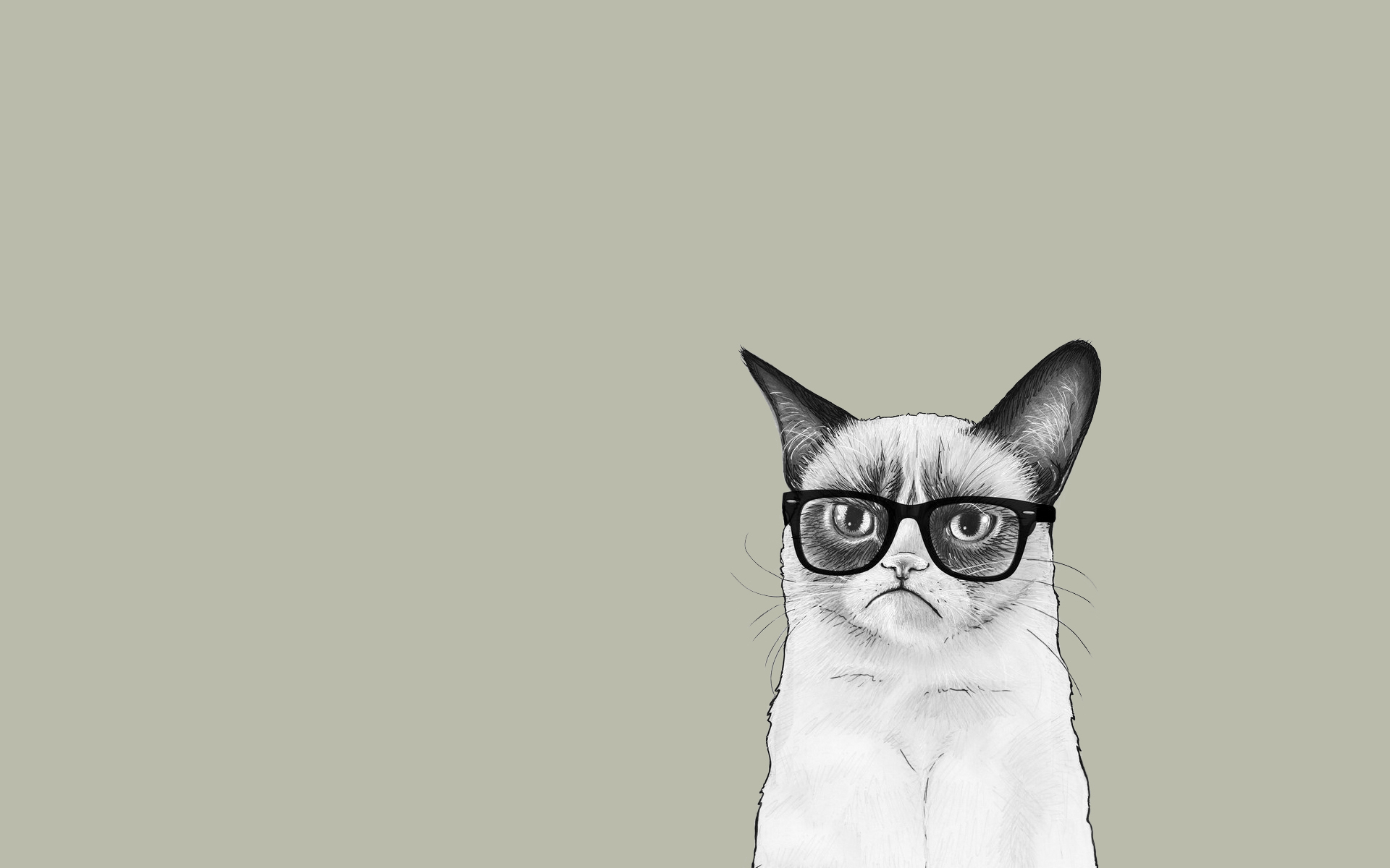 Halloween Black Cat Wallpaper Free Minimal Hd Wallpapers Pixelstalk Net