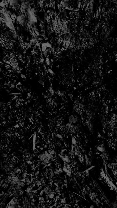1080 x 1920 Wallpaper HD | PixelsTalk.Net