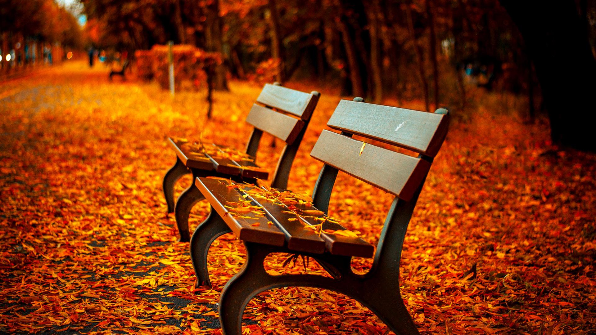 Free Desktop Wallpaper Scripture Fall Fall Scenery Wallpapers Free Download Pixelstalk Net