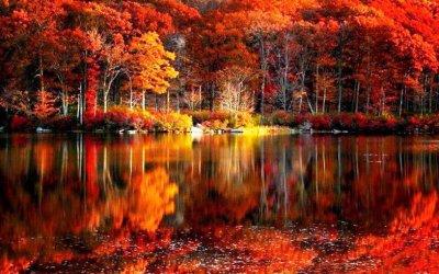 HD Fall Scenery Wallpapers   PixelsTalk.Net