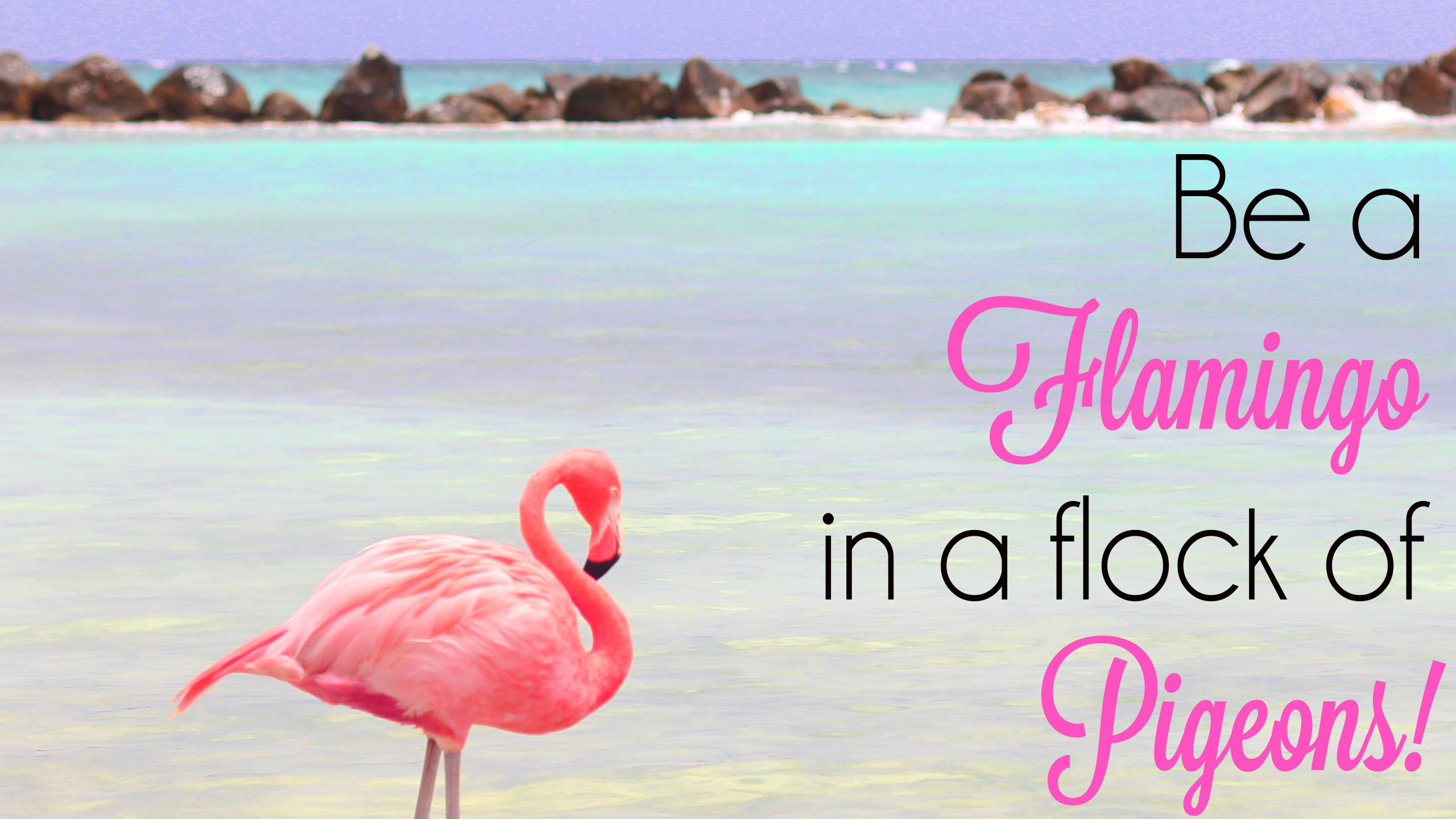 Mobile Wallpaper Inspirational Quotes Free Download Flamingo Wallpapers Pixelstalk Net