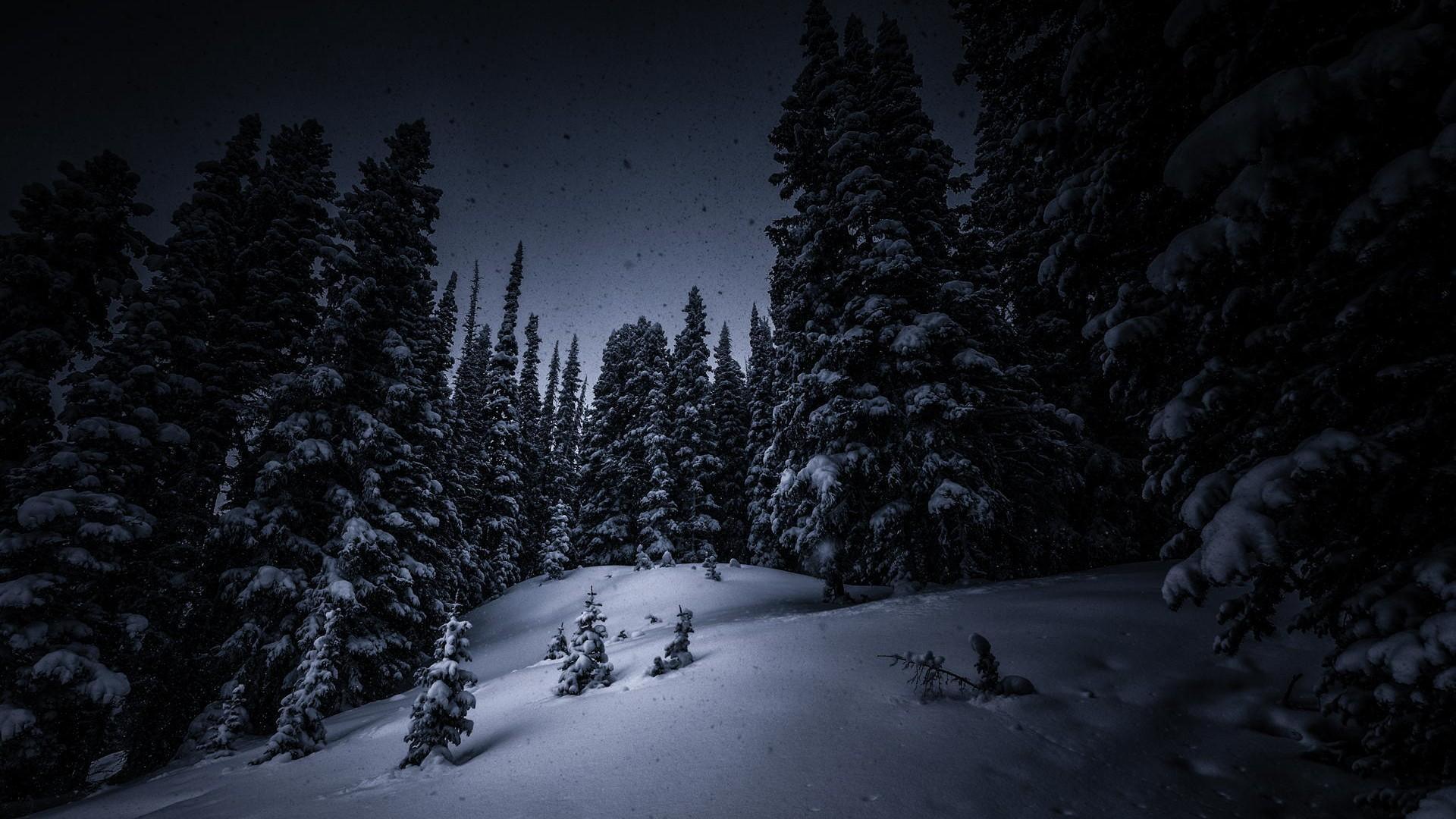 Thomas Kinkade Fall Desktop Wallpaper Dark Woods Hd Backgrounds Pixelstalk Net