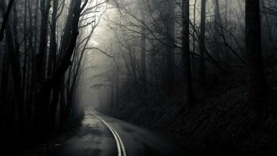 HD Dark Woods Backgrounds | PixelsTalk.Net